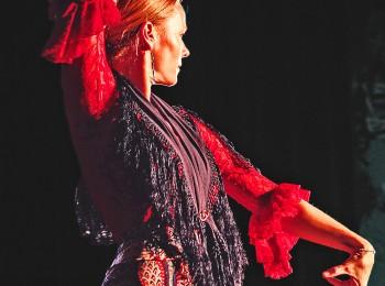 Line-flamencodanser-1